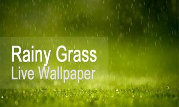 Regenachtige Gras Live Wallpaper