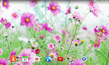 Sweet Flowers Live Wallpaper