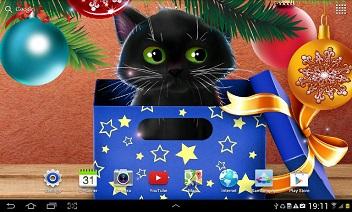 Crăciun Cat Live Wallpaper
