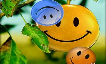 รอยยิ้ม LPW