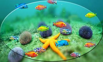 Fish Tank Android Wallpaper