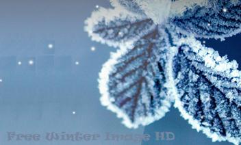 Gratis Winter Afbeelding HD