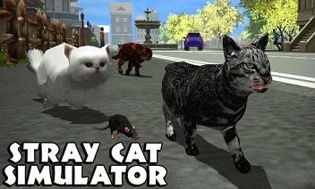 محاكاة القط الضالة