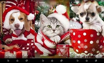 Christmas Animals Live Wallpaper