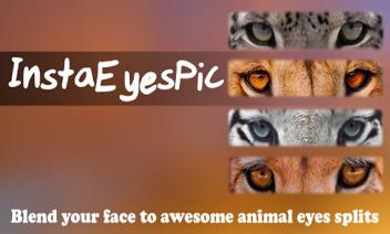 InstaEyesPic - عيون الحيوان