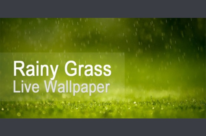 Rainy Grass Live Wallpaper