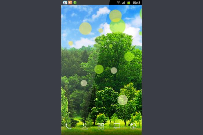 مشمس الغابات 3D لايف للجدران