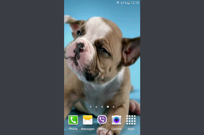 Cute puppies live wallpaper