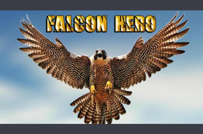 Falcon held
