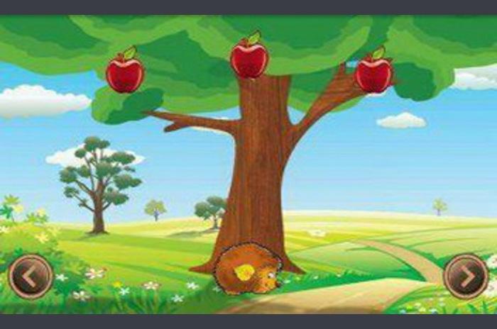 Frukt Rain