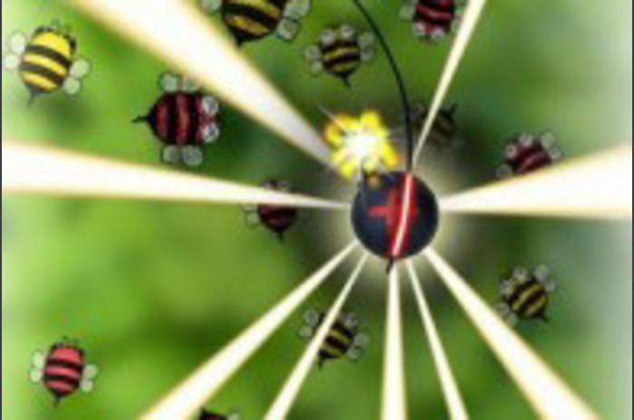 Bugs cirklar