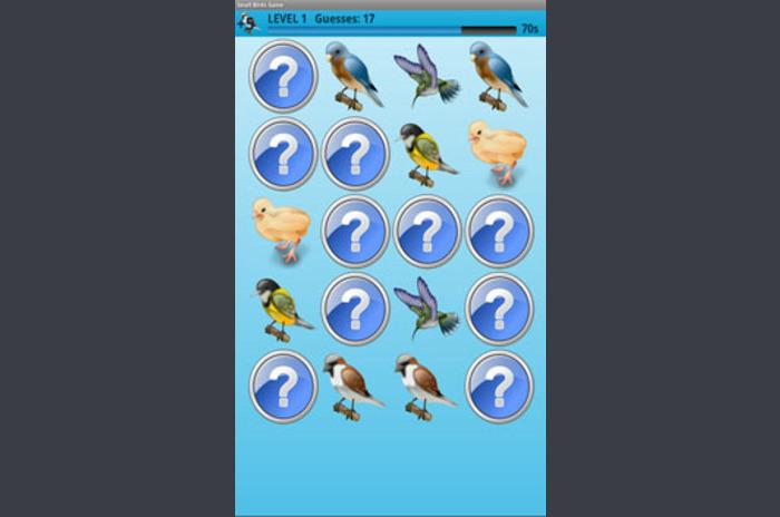Small Birds Memory Game