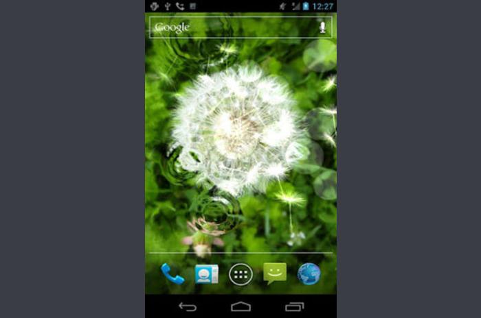 Galaxy Dandelion - Live Wallpaper