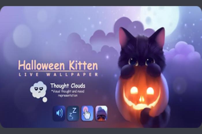 Cadılar Bayramı Kitten