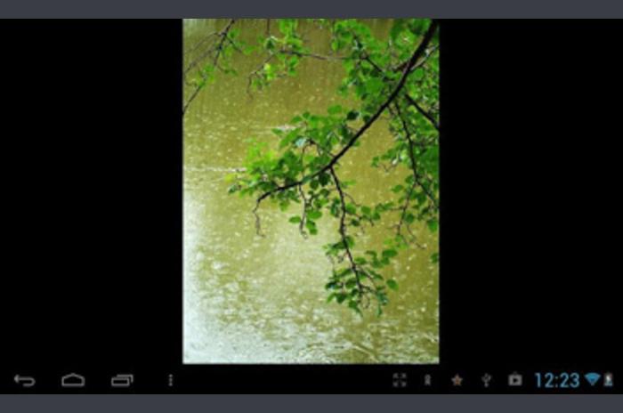 LWP ฝนฤดูใบไม้ผลิ