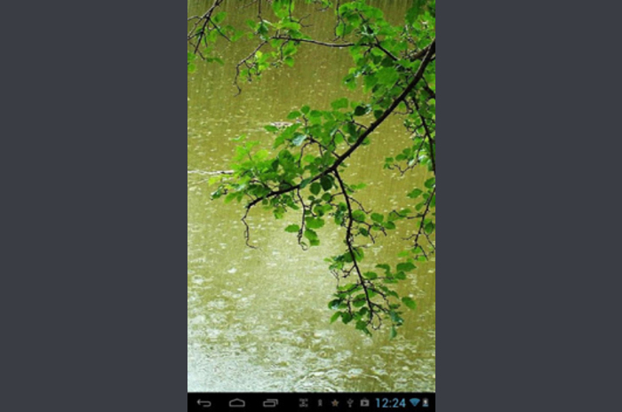 Spring rain LWP