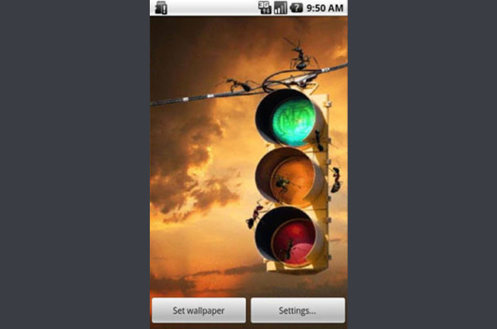 Ant Traffic Lights Live Wallpapers