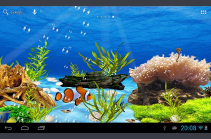 Aquarium levende