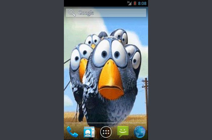 Funny Birds Live Wallpaper
