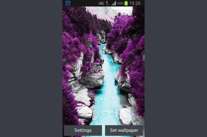 Fioletowy Natura żywo Tapety