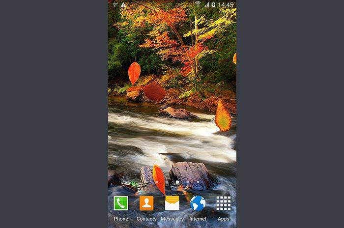 Autumn forest LWP