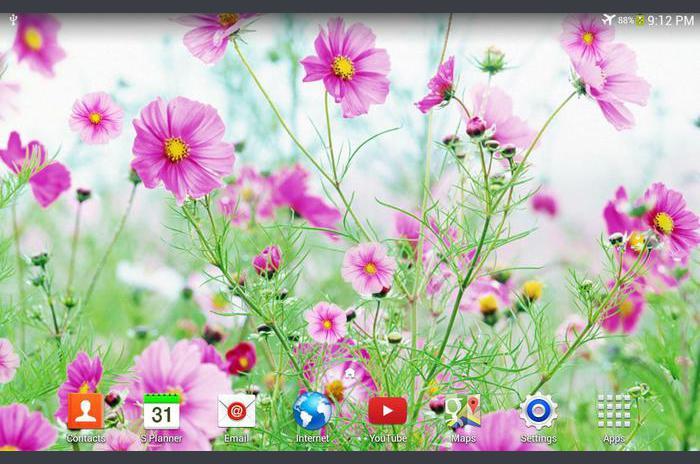หวานดอกไม้สดวอลล์เปเปอร์