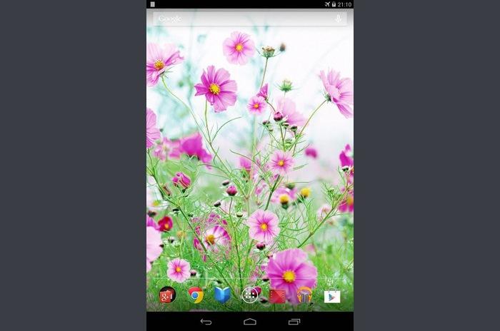 Söta blommor Live Wallpaper