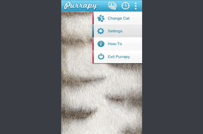 Purrapy Live Wallpaper Fluffy