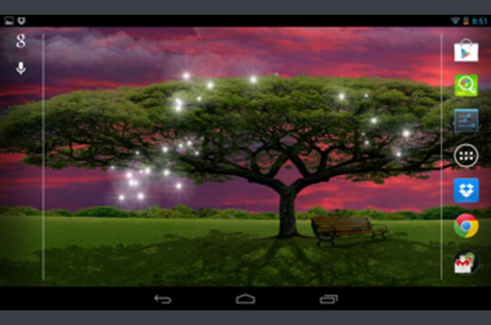Széles fa