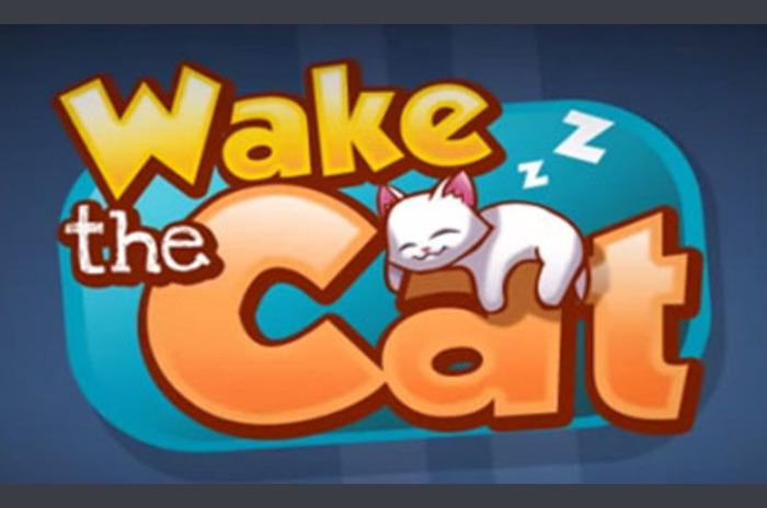 استيقظ القط