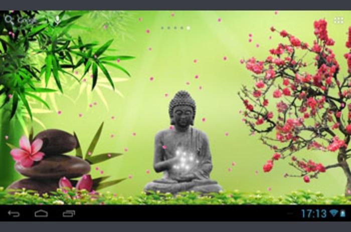 Relájese Fondos Zen