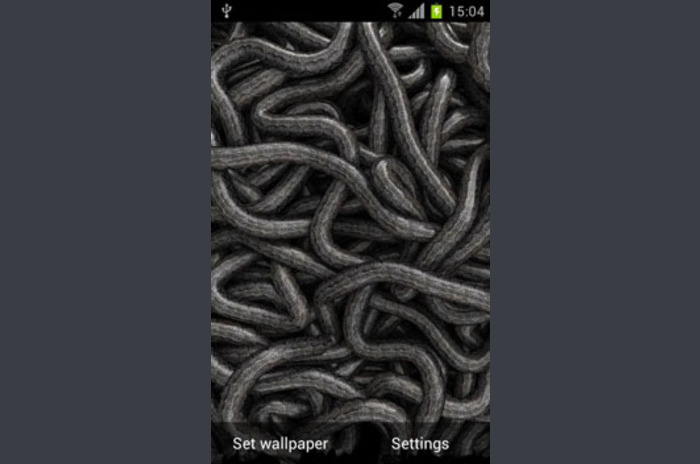 Worms Can Live Wallpaper