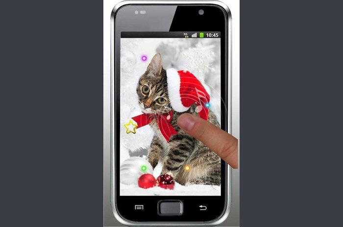 New Year kitty live wallpaper - New year kitty livewallpaper
