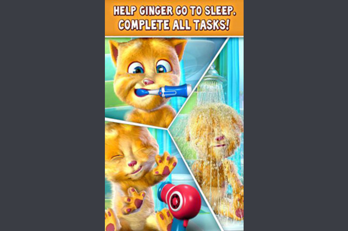 Govoreći Đumbir - Ginger govoreći