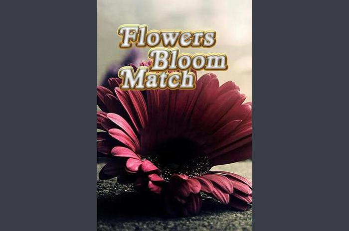 Les fleurs fleurissent correspondance