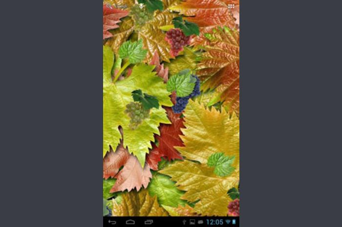 Galaxy Grape Free Wallpaper