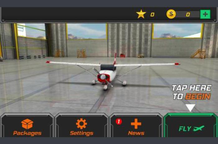 pilote de vol: Simulateur 3D