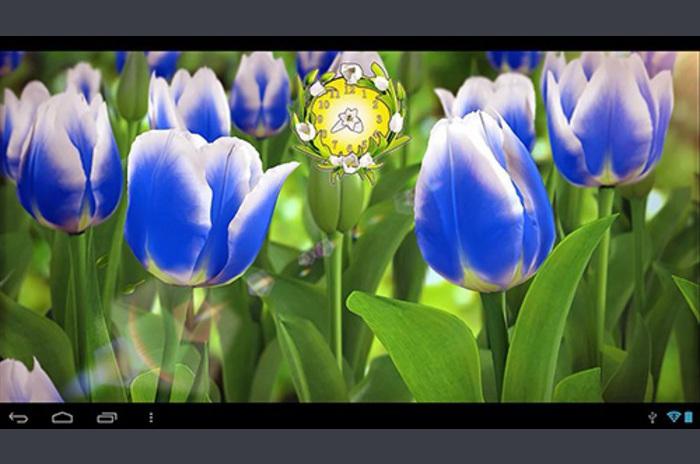 Duvar Kağıdı çiçek 3D Canlı