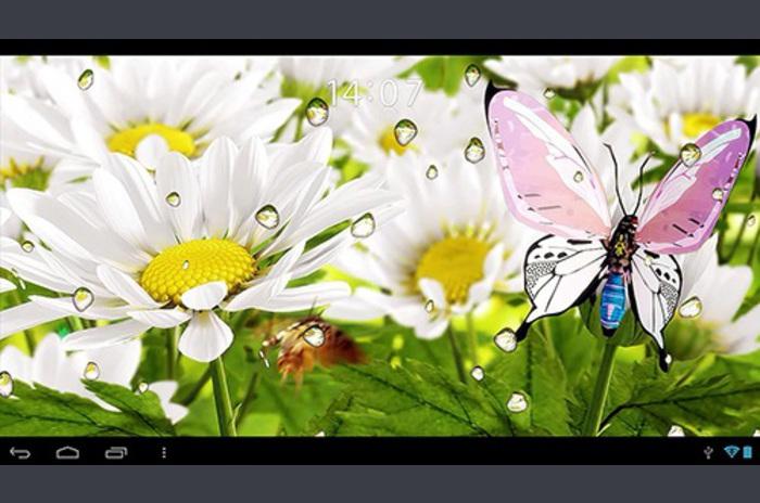 Live Wallpaper Mijn bloem 3D