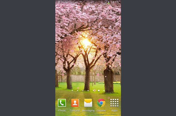 Live Wallpaper Sakura by orchid