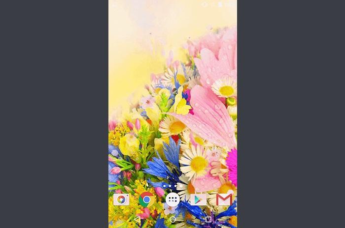 Flores por Phoenix Live Wallpapers