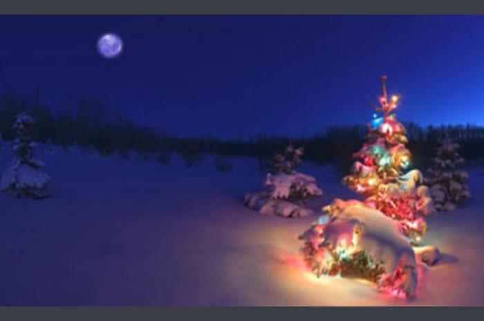 Arbre de Noël Live Wallpaper