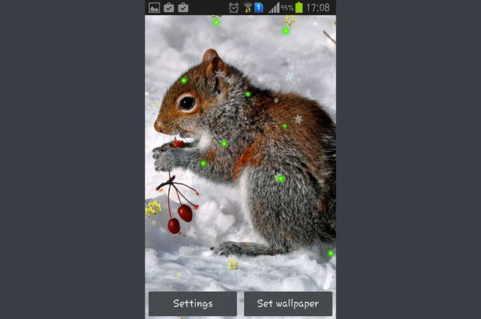 Winter squirrel LWP