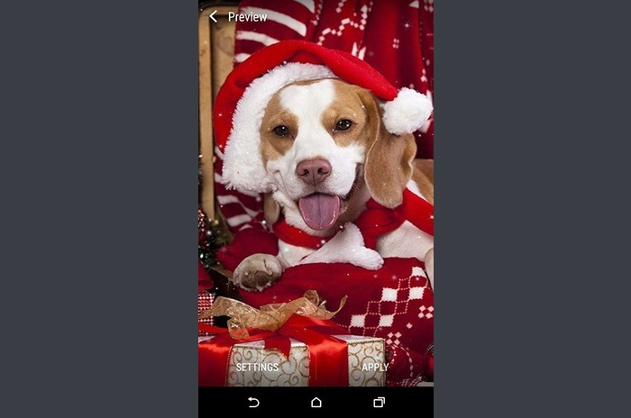 Christmas Animals Live Wallpaper