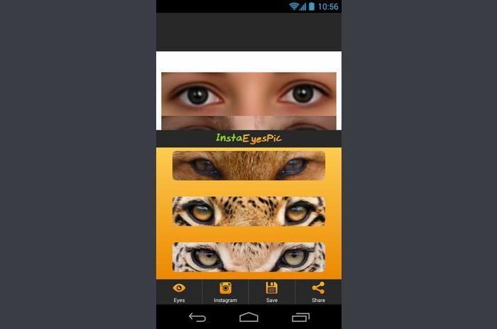 InstaEyesPic - Animal Eyes