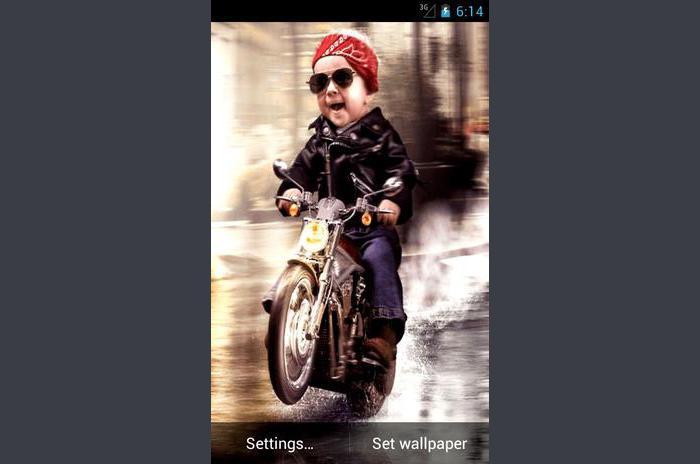 Little Biker Live Wallpaper