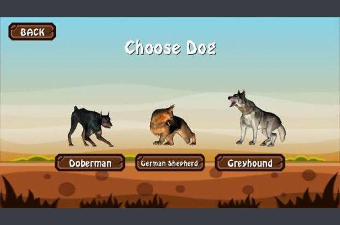 Doggy köpek Dünya