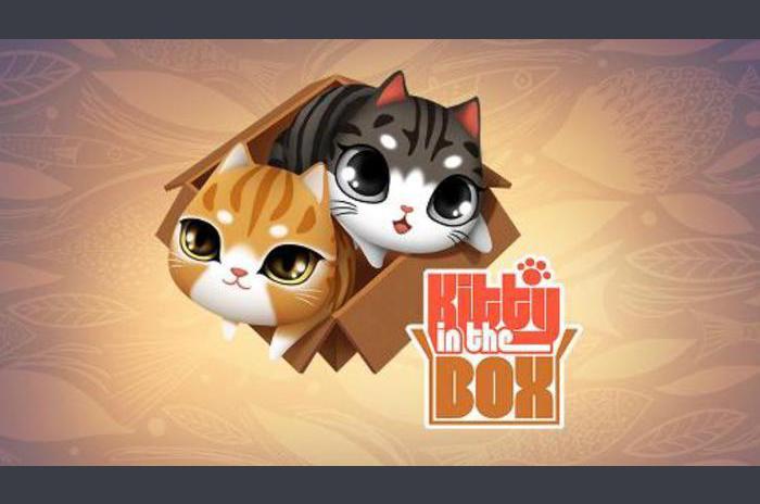 Kitty u kutiji