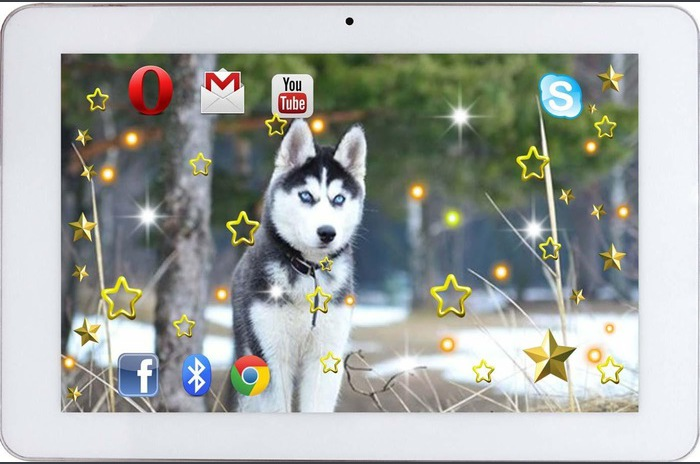Husky Sunete HD wallpaper viu